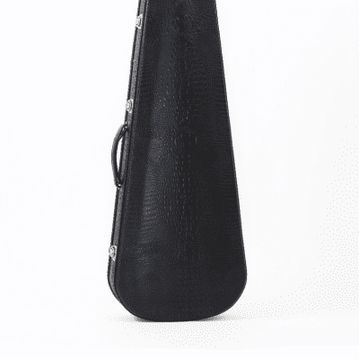 Access Bags and Cases Stage Five Electric Guitar Case for Strat