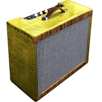 Ashen 5E3 Type 30 Watts Custom Guitar Combo 12