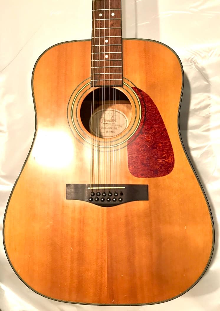 fender acoustic guitar 12 strings dg14s 12 tf natural hard reverb. Black Bedroom Furniture Sets. Home Design Ideas