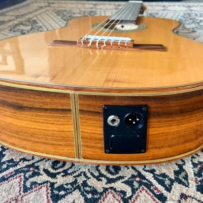 Giannini 7 String Luthier made Electroacoustic Classical Brazilian Rosewood, Mogno, Cedro for sale