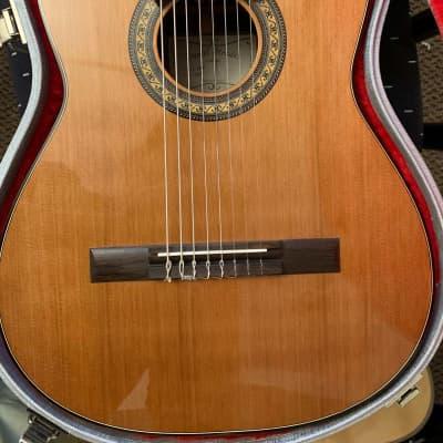 Daniel Mendes Eight String Guitar 2018 Cedar / Brazilian Rosewood