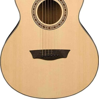 Washburn AGM5K-A Apprentice Series Acoustic Guitar for sale