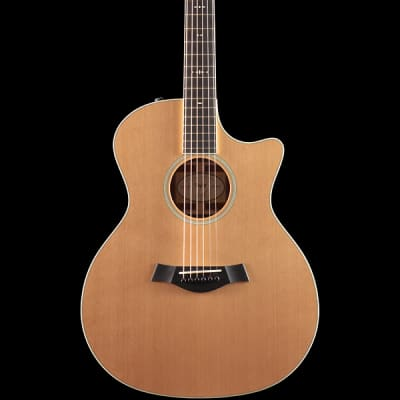 Taylor Willcutt Acoustic Suites Special Edition GAce Cocobolo (130)