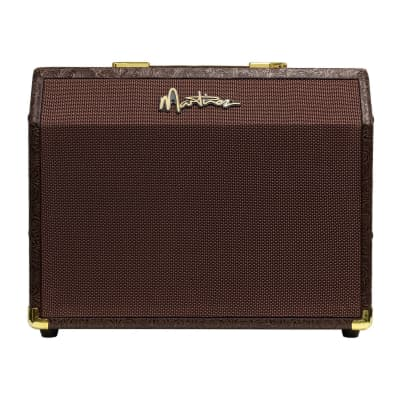 Martinez Retro-Style 25 Watt Acoustic Guitar Amplifier with Reverb (Paisley Brown) for sale