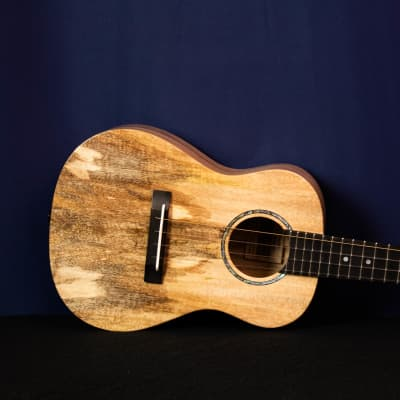 "Romero Creations RSMG - Solid Spalted Mango- ""Major Tom"" Dani Joy Music"