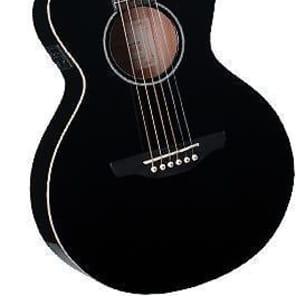 Takamine EG MINI Acoustic/Electric - Black (244) for sale