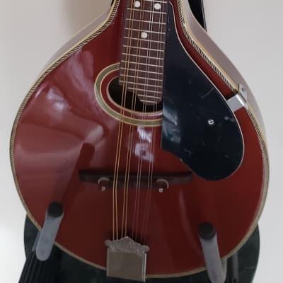 Goya GM-23  Mandolin for sale
