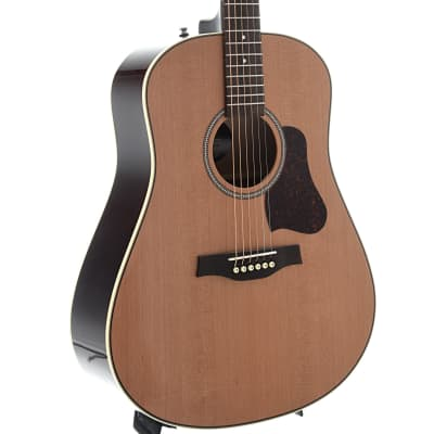 Seagull Coastline Cedar Momentum 6-String Acoustic Guitar for sale