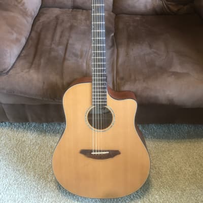 Breedlove Solo D 350/CM 2002 Clear