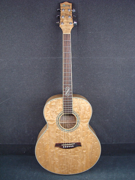 Ibanez Exotic Wood Series Ew20asnt1201 Quilted Ash Acoustic Guitar