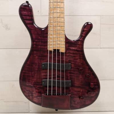 CSR Mod Bass 5 String Bass w/ OHSC for sale