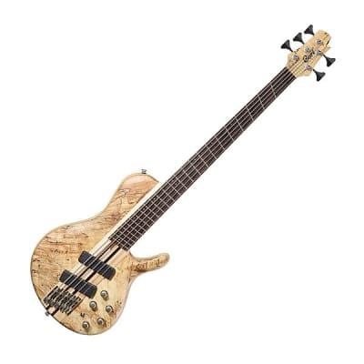 Cort A5PLUSSCMSOPN Artisan 5PCS Maple & Panga Panga Neck Multiscale 5-String Bass Guitar w/Hard Case