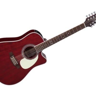 Takamine John Jorgenson Model 12-String Acoustic Guitar Dreadnought Cutaway w/case - JJ325SRC-12 for sale