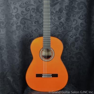 Raimundo Flamenco  Guitar  Model 145 Negra !!! for sale