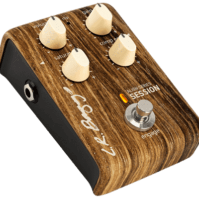 LR Baggs Align Series Session for sale