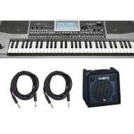 Korg PA900 61-Key Arranger Keyboard w/Roland KC-350 Bundle