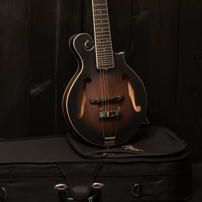Gold Tone  F 12: F style mando-guitar with pickup 2021 dark burst