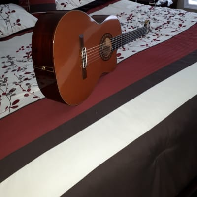 D.W.Stevens 1A  Classical Guitar With Cutaway for sale