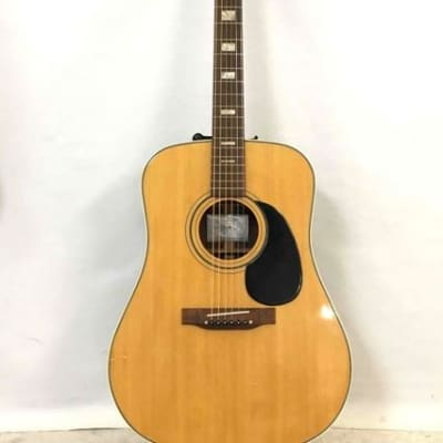 RARE Find and Cool - Conn F25 70s Acoustic Guitar for sale
