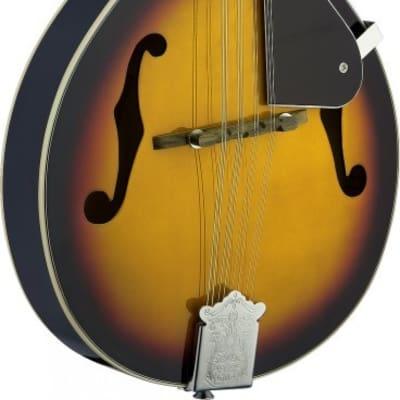 Mandolin Linden Top Violinburs
