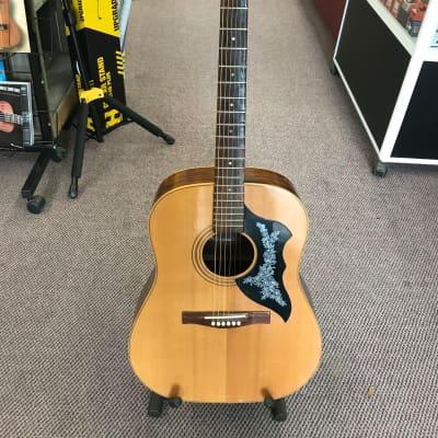 Giannini Vintage Acoustic Guitar for sale