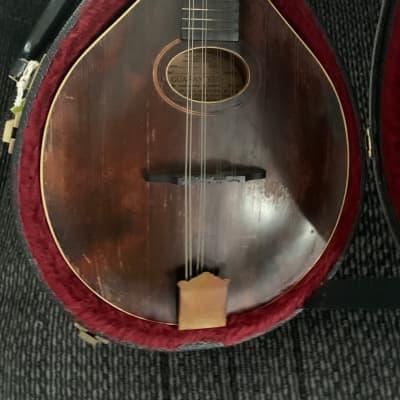 Gibson Mandolin 1920s Gibson  1920? Dark maple