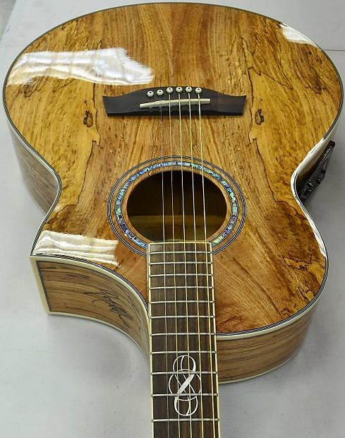 Ibanez Exotic Wood Series 6 String Acoustic Electric Guitar Ew20sge Nt 3t 02
