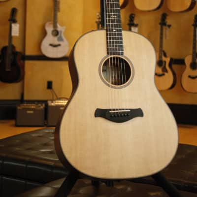 Taylor 2019 Builder's Edition 517e Brand New with Factory Warranty for sale
