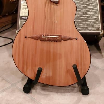 2018 Rick Turner Renaissance 12-String Guitar w OHSC for sale