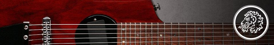 Rick Turner /Renaissance Guitars