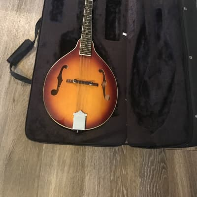 Samick Artist Sun burst with hard case with soft padding in excellent condition for sale