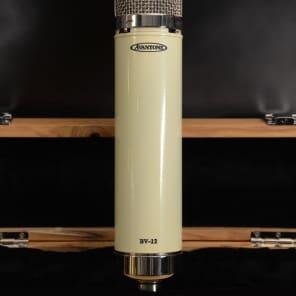 Avantone Audio BV-12 Multipattern Tube Condenser Microphone