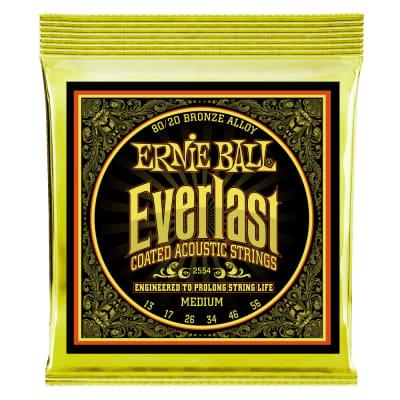 P02554 Everlast 80/20 Acoustic Guitar Strings, .013 - .056
