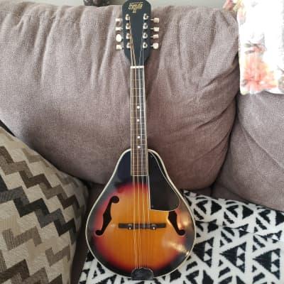 Hondo II A Style Mandolin sunburst for sale