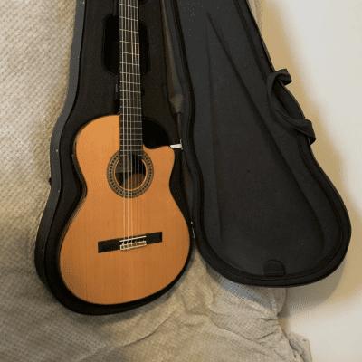 Paco Castillo 224CE Handmade Spanish Classical Guitar for sale
