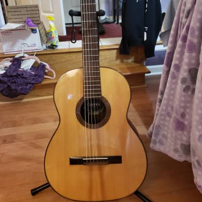 Rare all original Giannini Alhambra AWN 100 1973 Spruce SOLID JACARANDA B/S for sale