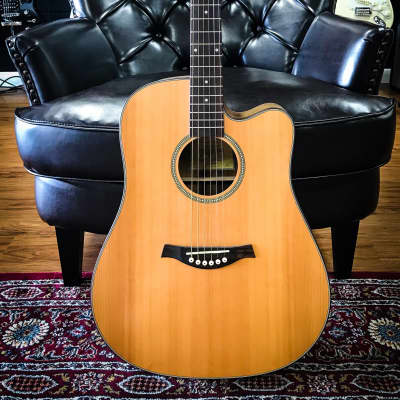 Tagima Walnut Two-Folk Dreadnought Natural for sale