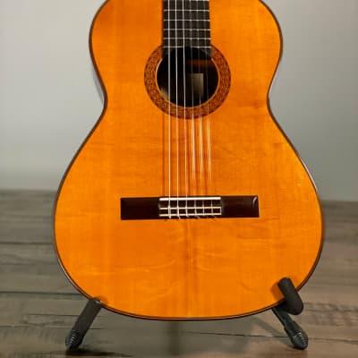 Manuel  Velazquez Classical German Spruce/Brazilian 1981 Nitrocellulose for sale