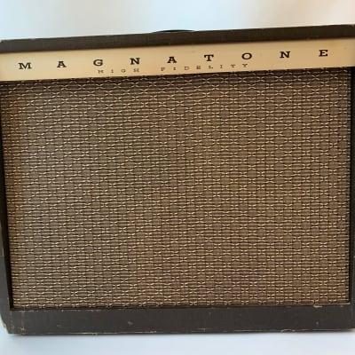 1962 Magnatone Custom 415 bass/guitar amp