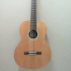 Kremona Artist Series Sofia SC-T Nylon String Classical Acoustic Guitar #2A for sale