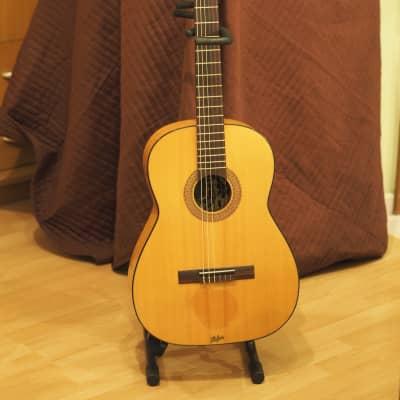 Hofner 495 Vintage German 4/4 Full Size Classical Guitar Solid Spruce (1974) for sale
