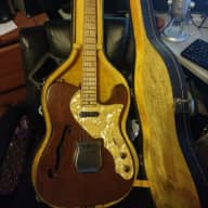 <p>El Degas 1969 Thinline Tele</p>  for sale