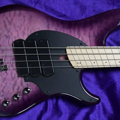 Dingwall Combustion (4-String), Ultra Violet / Maple / 3 Pickups *In Stock!