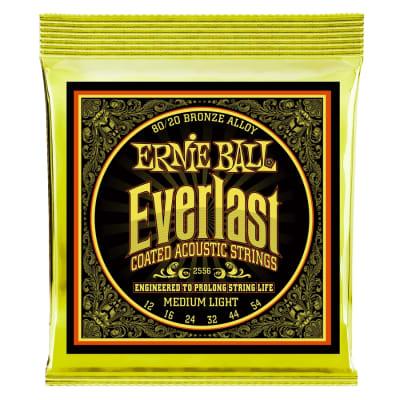 Ernie Ball 2556 Everlast Coated 80/20 Bronze Medium Light 12-54