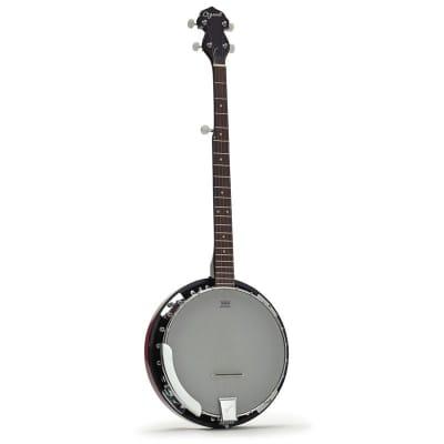 Ozark 5 String Banjo and Padded Cover for sale