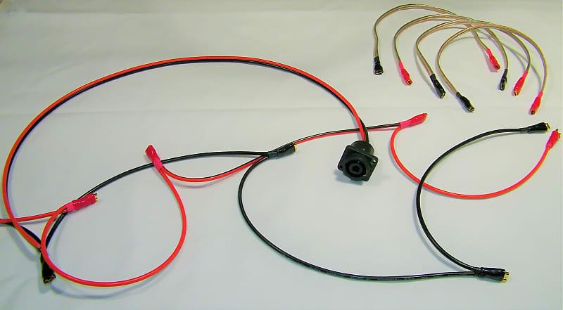 Phenomenal Earcandy Speakon 1 4 Combo 8X10 Bass Cab Wiring Harness 4 Reverb Wiring 101 Nizathateforg