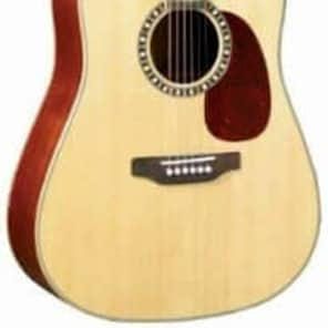 JB Player JB85S Dreadnought for sale