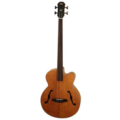 Aria Elecord Series Fretless Acoustic Bass Guitar Natural Flame for sale