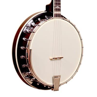 Gold Tone IT-250R Professional 4-String Irish Tenor Banjo with Resonator - Vintage Brown