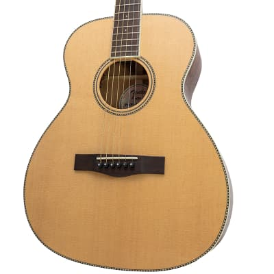 Used Fender PM-TE Paramount Travel Standard, Natural Acoustic Electric Guitar w/ Hardshell Case for sale